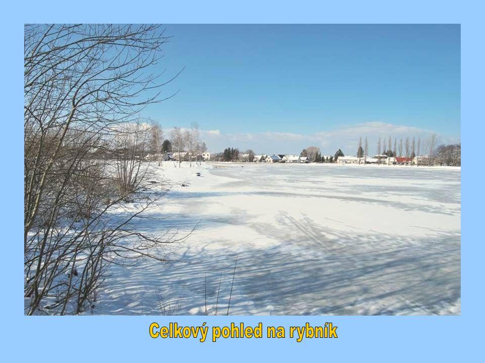 Celkový pohled na rybník