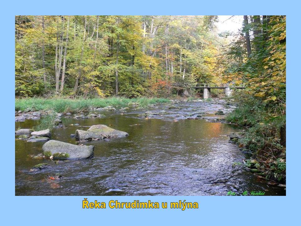 Řeka Chrudimka u mlýna