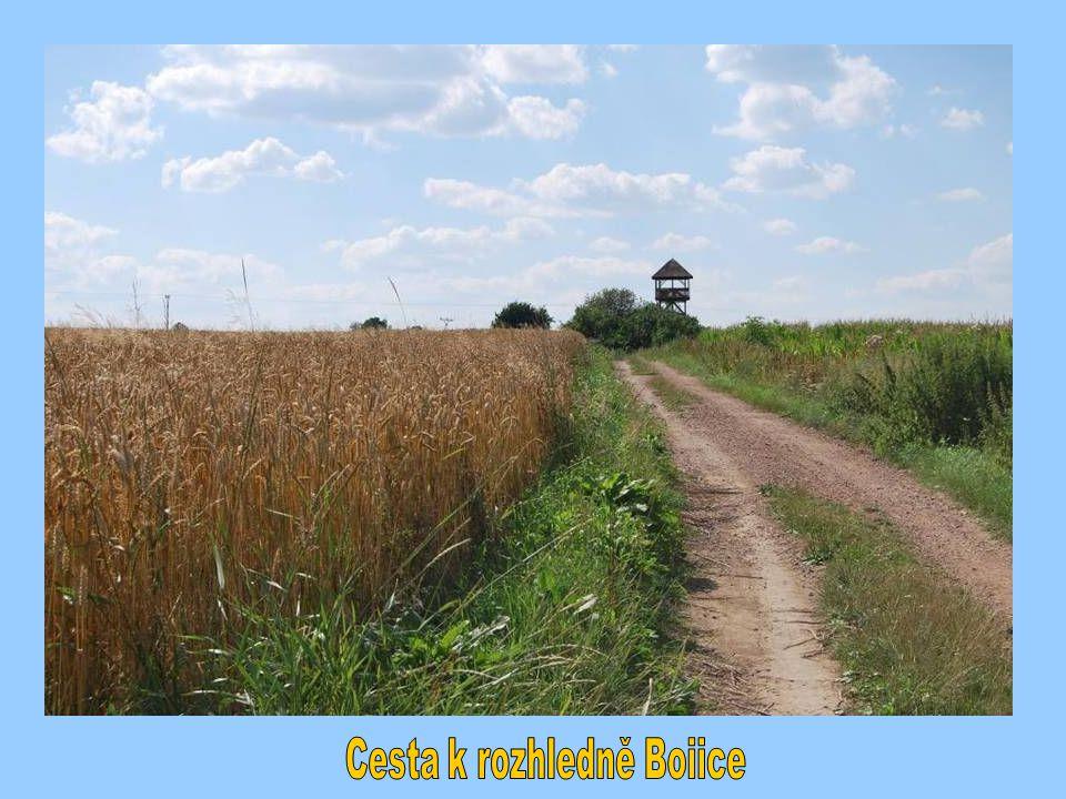Cesta k rozhledně Boiice