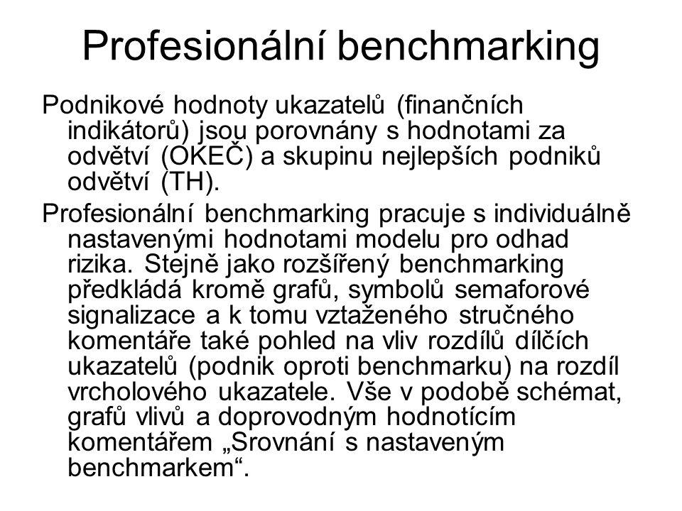 Profesionální benchmarking