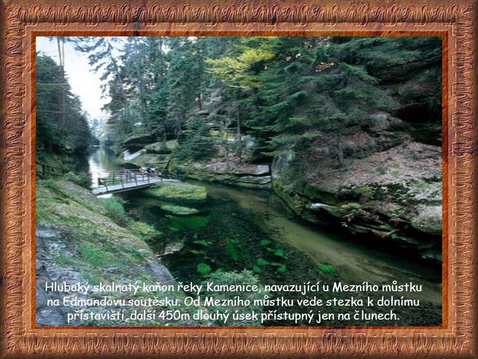 Hluboký skalnatý kaňon řeky Kamenice, navazující u Mezního můstku na Edmundovu soutěsku.