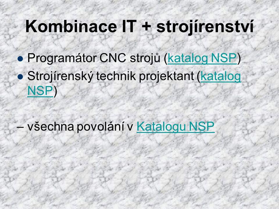 Kombinace IT + strojírenství