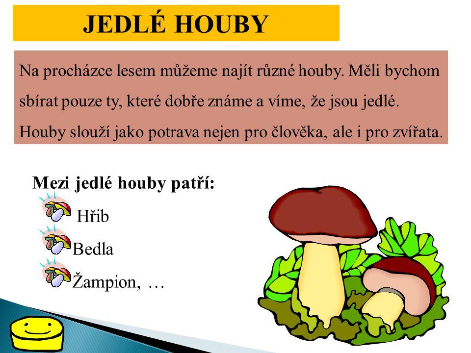 JEDLÉ HOUBY Mezi jedlé houby patří: Hřib Bedla Žampion, …