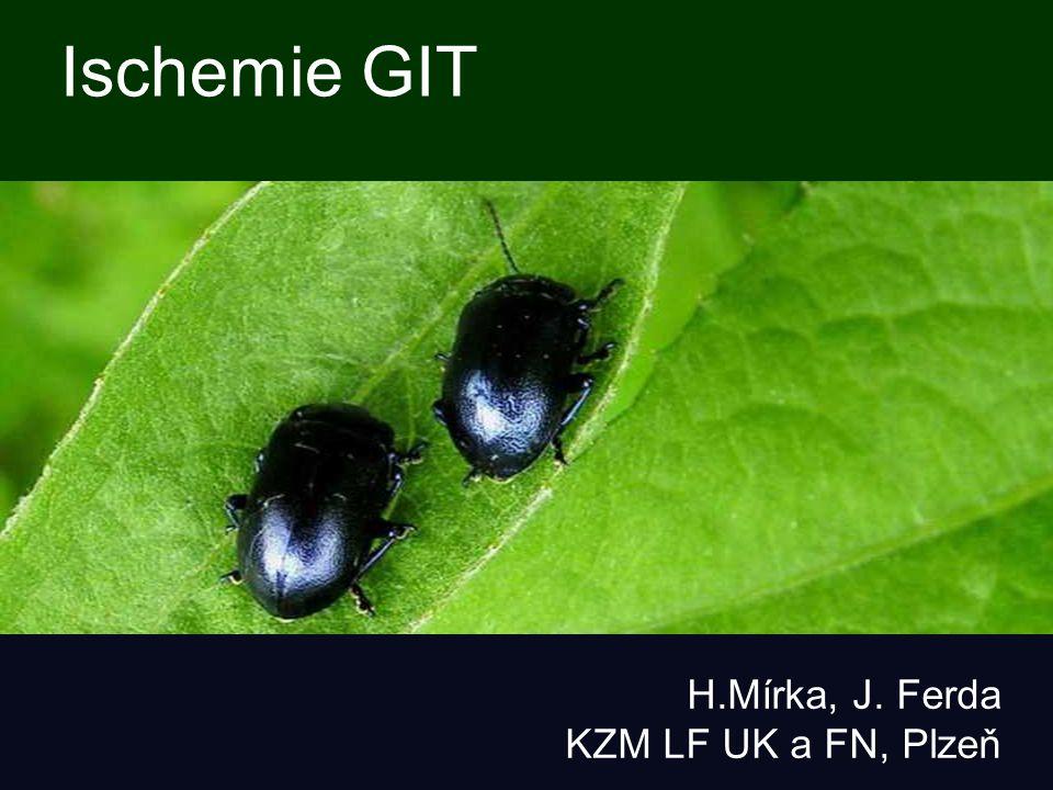 Ischemie GIT H.Mírka, J. Ferda KZM LF UK a FN, Plzeň