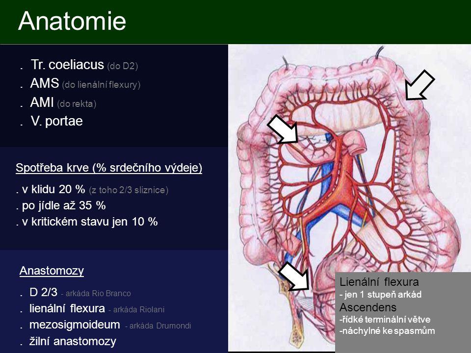 Anatomie . Tr. coeliacus (do D2) . AMS (do lienální flexury) . AMI (do rekta) . V. portae Spotřeba krve (% srdečního výdeje)