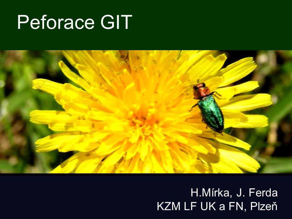 Peforace GIT H.Mírka, J. Ferda KZM LF UK a FN, Plzeň