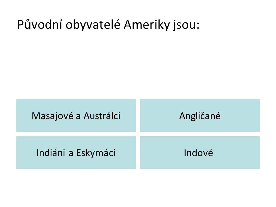 Původní obyvatelé Ameriky jsou: