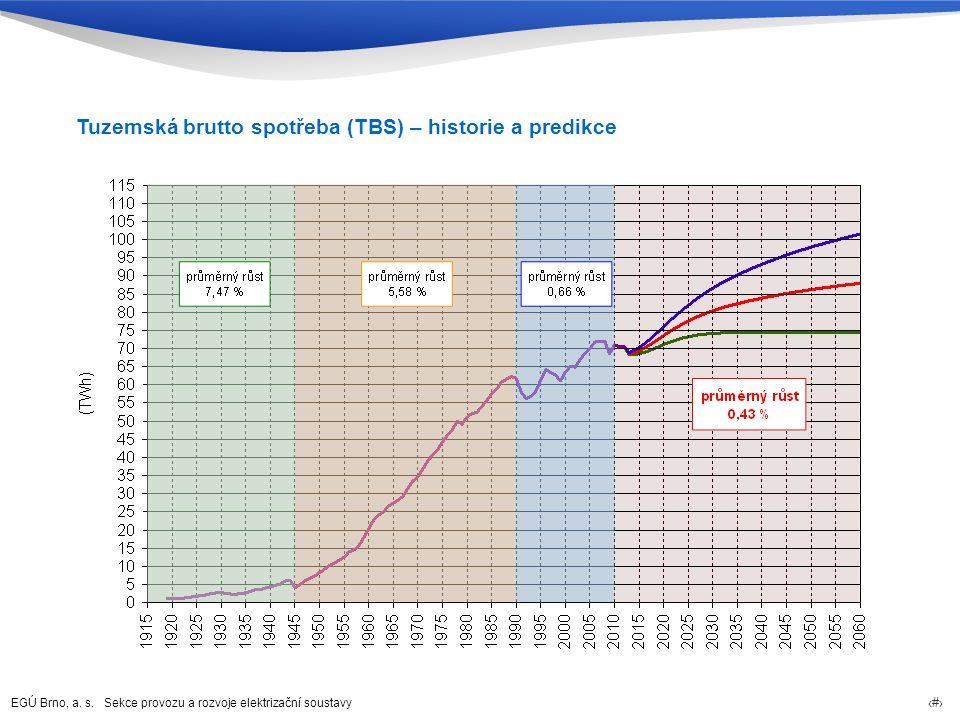 Tuzemská brutto spotřeba (TBS) – historie a predikce
