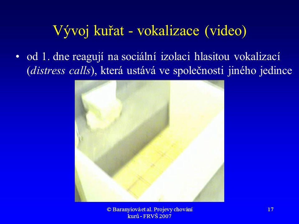 Vývoj kuřat - vokalizace (video)