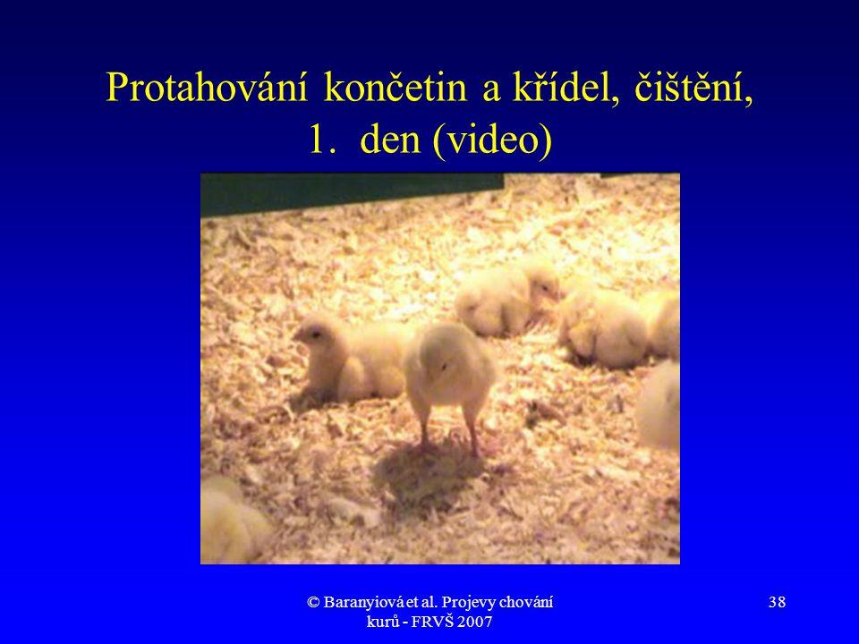 Protahování končetin a křídel, čištění, 1. den (video)
