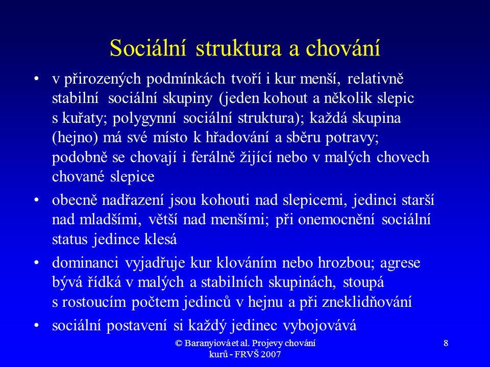 Sociální struktura a chování