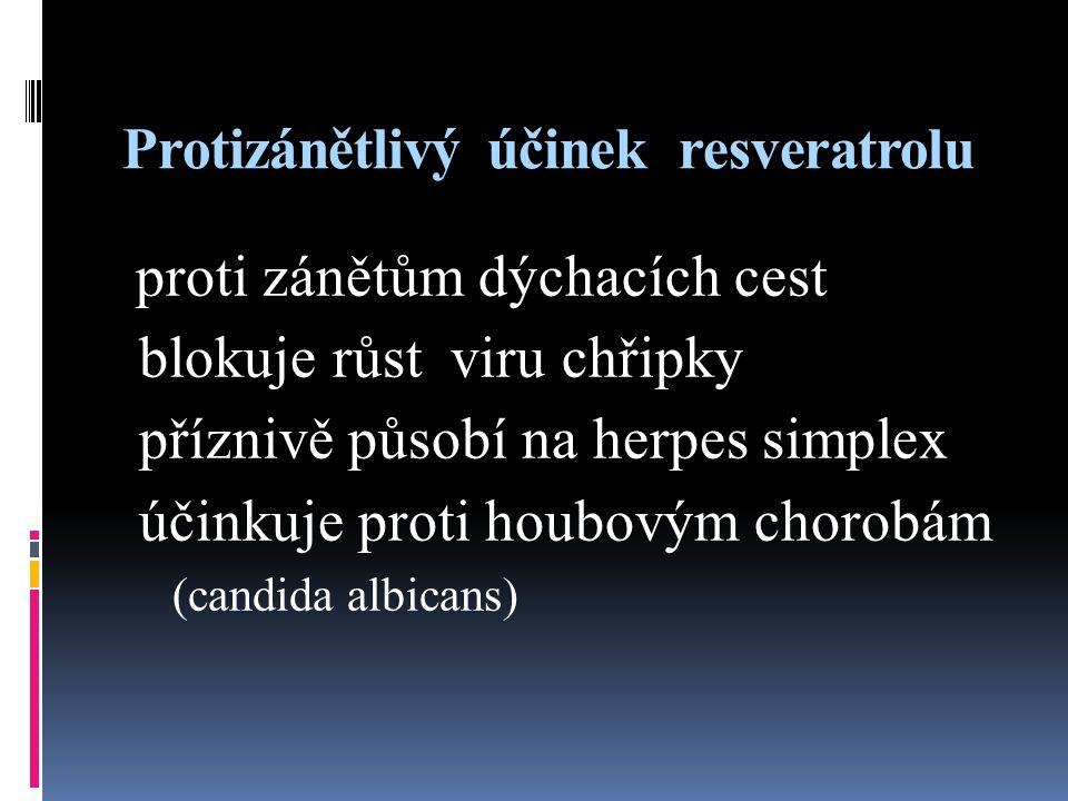 Protizánětlivý účinek resveratrolu