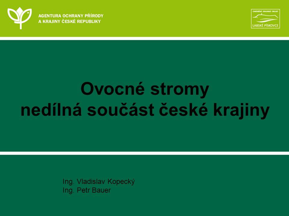 Ovocné stromy nedílná součást české krajiny