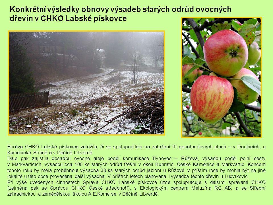 Konkrétní výsledky obnovy výsadeb starých odrůd ovocných dřevin v CHKO Labské pískovce