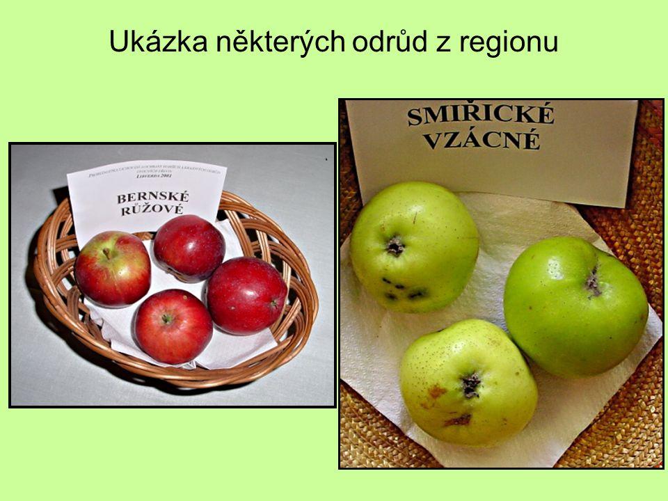 Ukázka některých odrůd z regionu