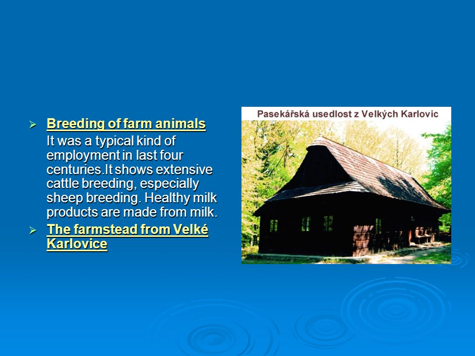 Breeding of farm animals