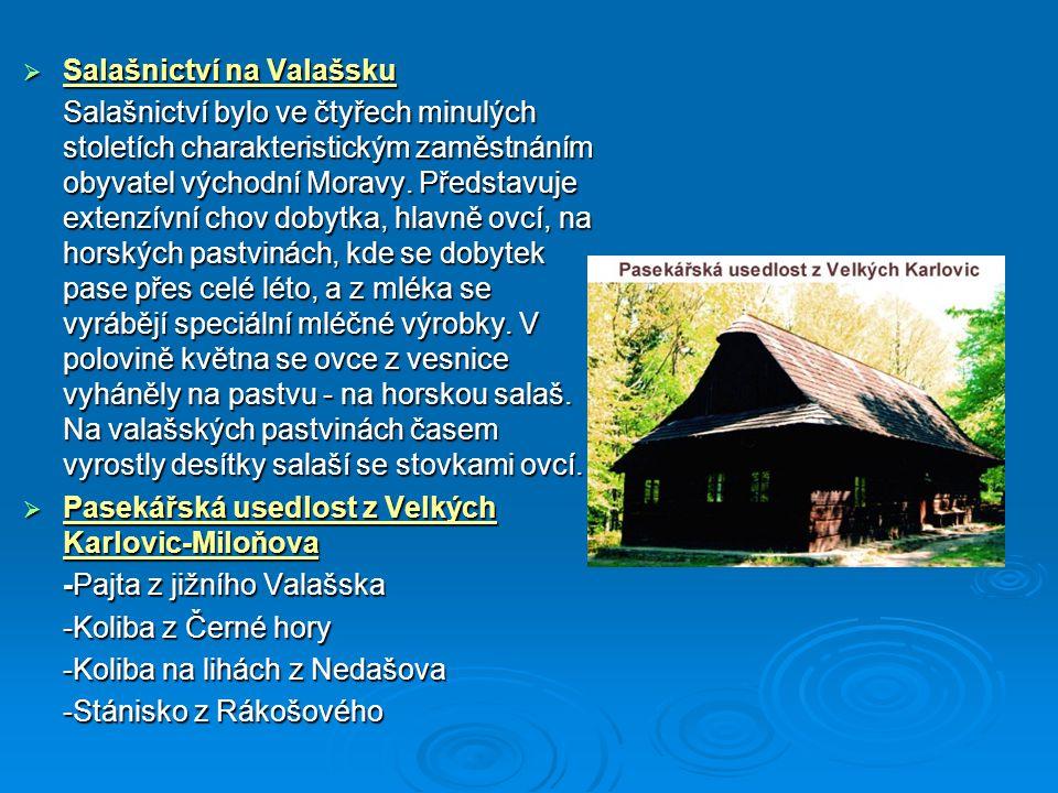 Salašnictví na Valašsku