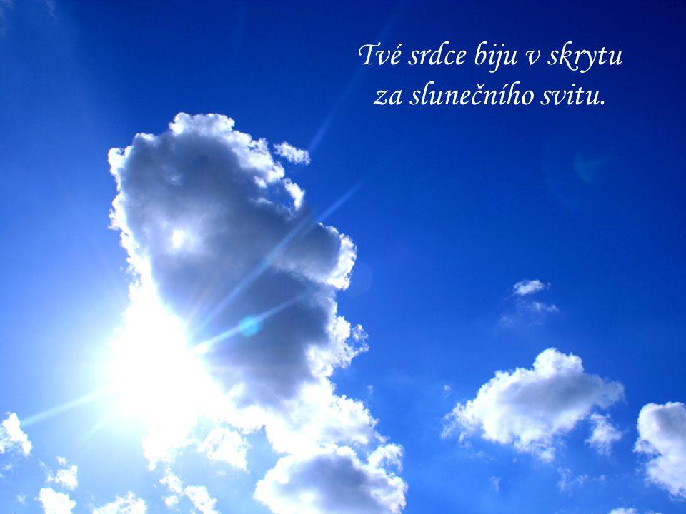 Tvé srdce biju v skrytu za slunečního svitu.
