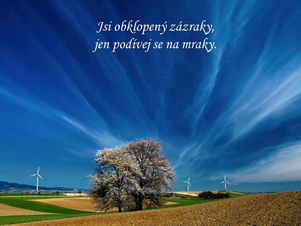 Jsi obklopený zázraky, jen podívej se na mraky.