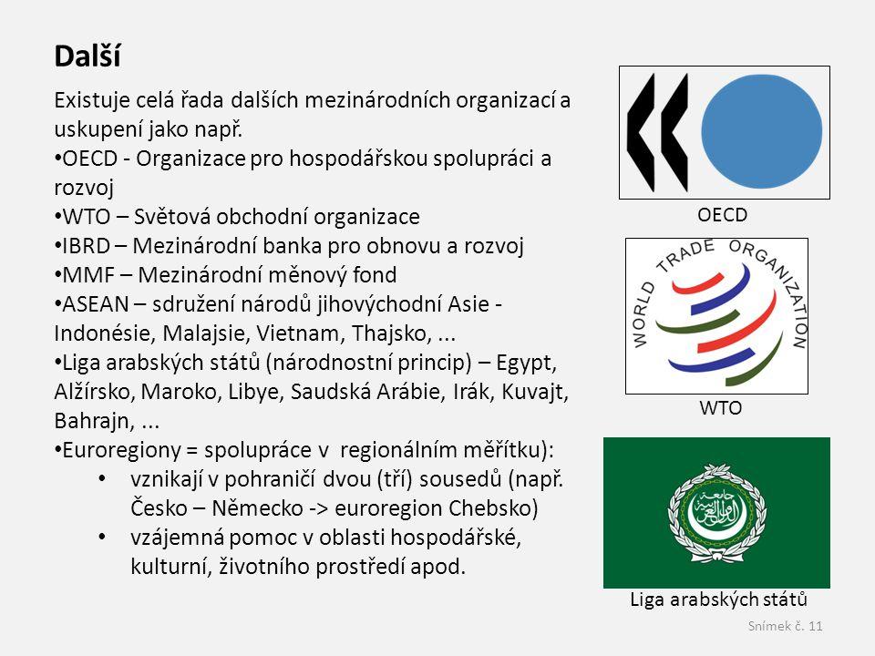 Další Existuje celá řada dalších mezinárodních organizací a uskupení jako např. OECD - Organizace pro hospodářskou spolupráci a rozvoj.