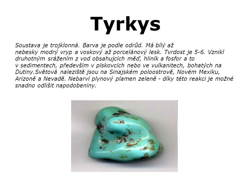 Tyrkys Soustava je trojklonná. Barva je podle odrůd. Má bílý až