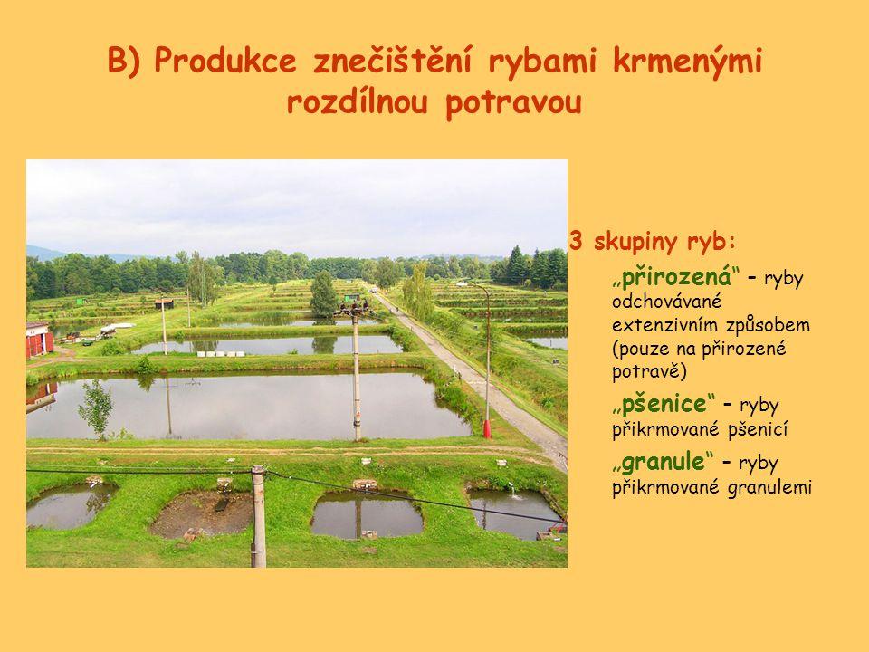 B) Produkce znečištění rybami krmenými rozdílnou potravou
