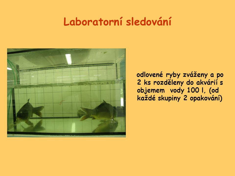 Laboratorní sledování
