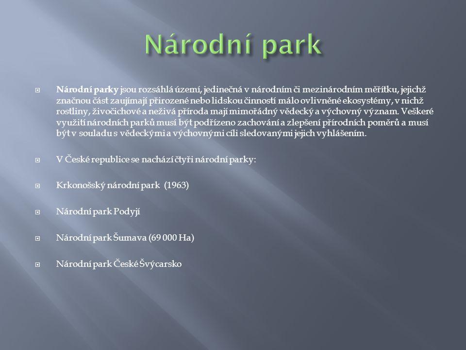 Národní park