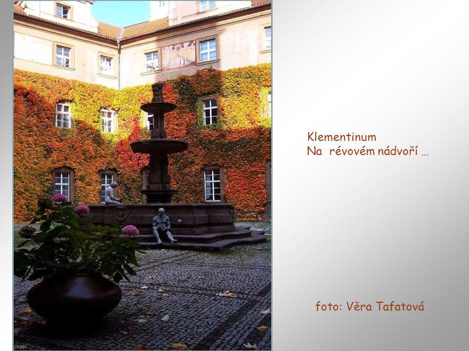 Klementinum Na révovém nádvoří … foto: Věra Tafatová