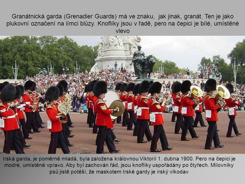 Granátnická garda (Grenadier Guards) má ve znaku, jak jinak, granát
