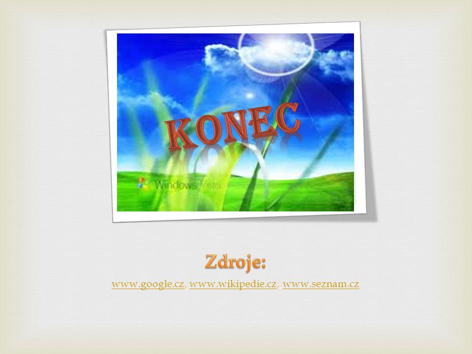 www.google.cz, www.wikipedie.cz, www.seznam.cz