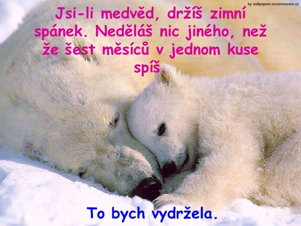 Jsi-li medvěd, držíš zimní spánek