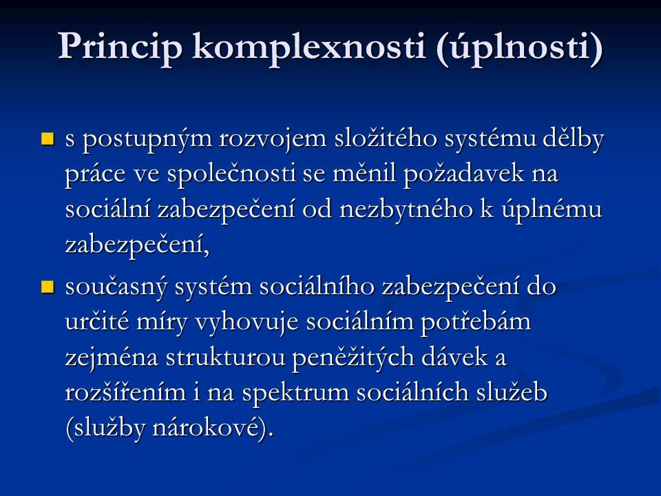 Princip komplexnosti (úplnosti)