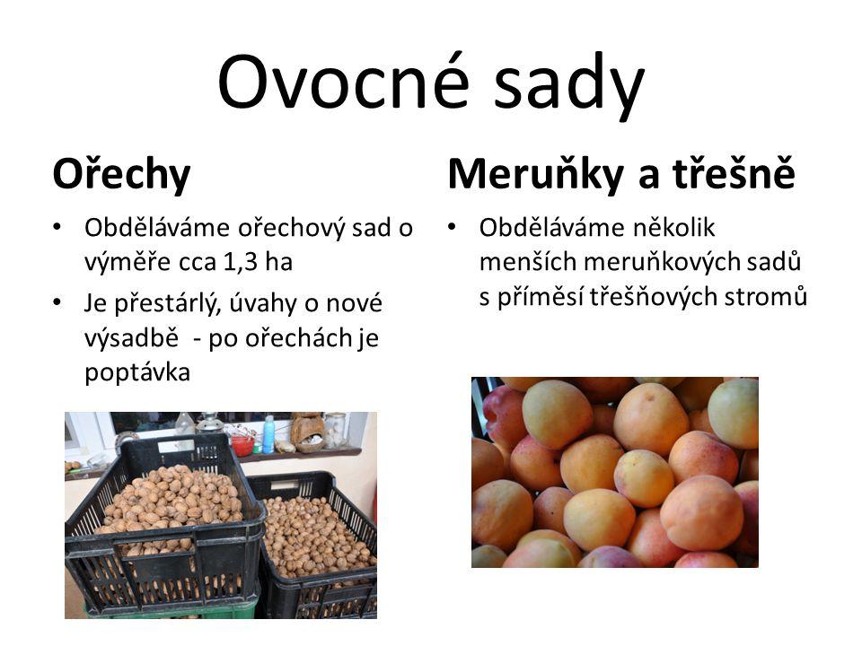 Ovocné sady Ořechy Meruňky a třešně