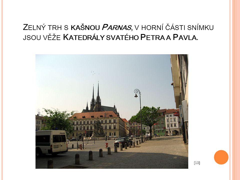 Zelný trh s kašnou Parnas, v horní části snímku jsou věže Katedrály svatého Petra a Pavla.