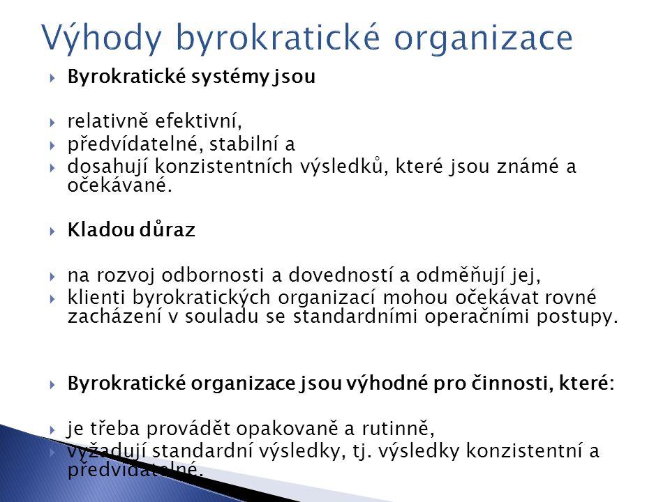 Výhody byrokratické organizace