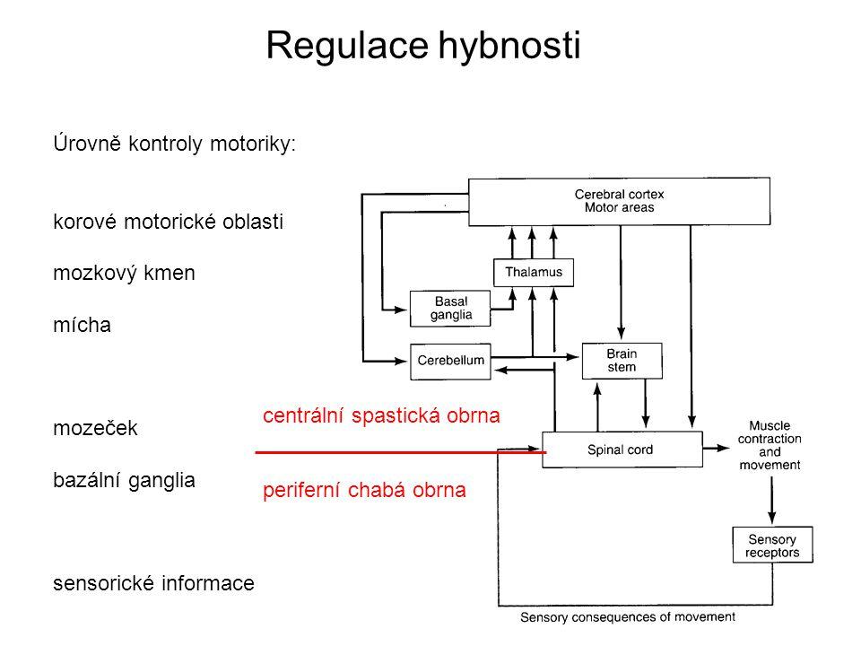 Regulace hybnosti Úrovně kontroly motoriky: korové motorické oblasti