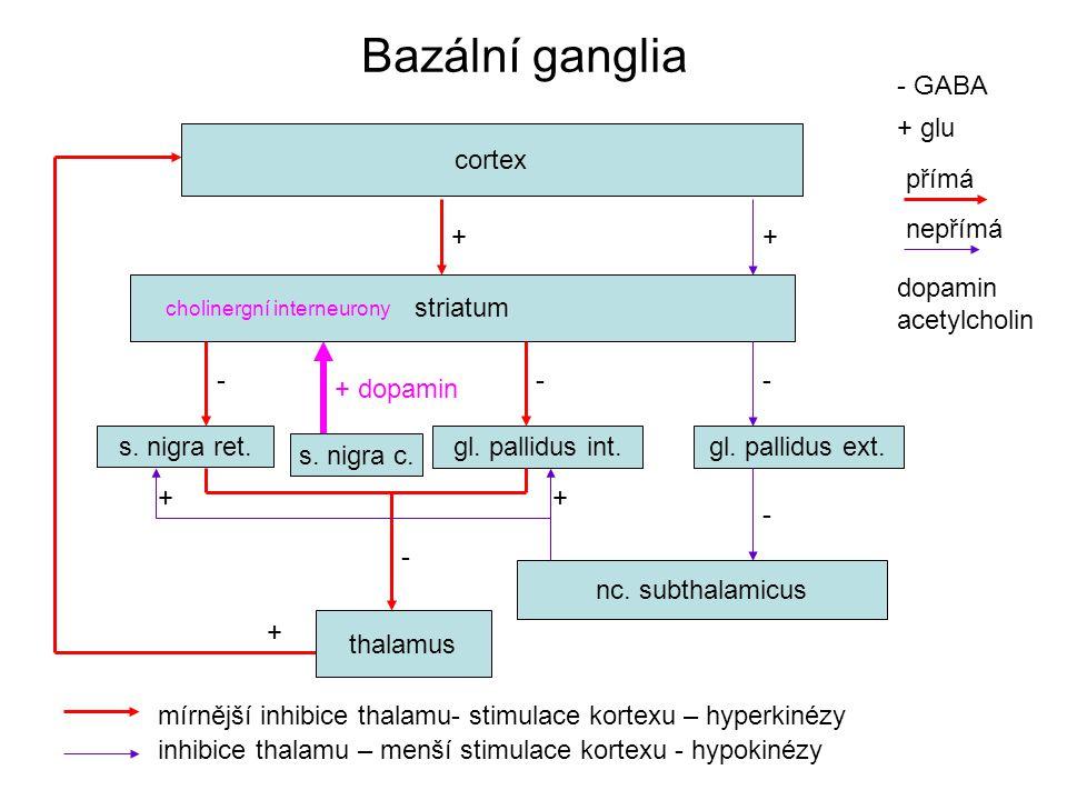 Bazální ganglia - GABA + glu cortex přímá + nepřímá + dopamin