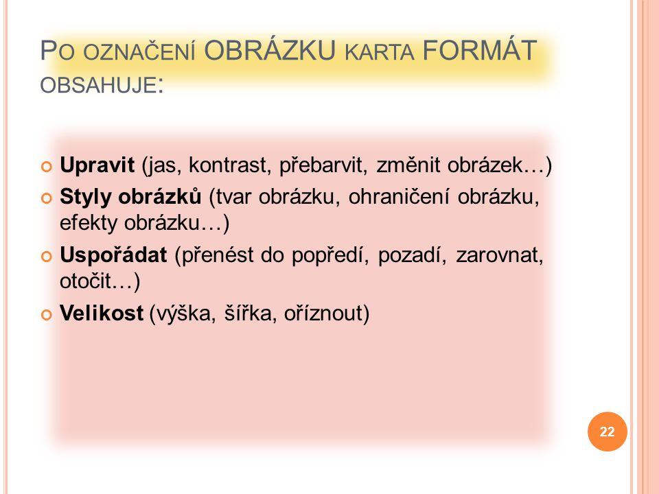 Po označení OBRÁZKU karta FORMÁT obsahuje: