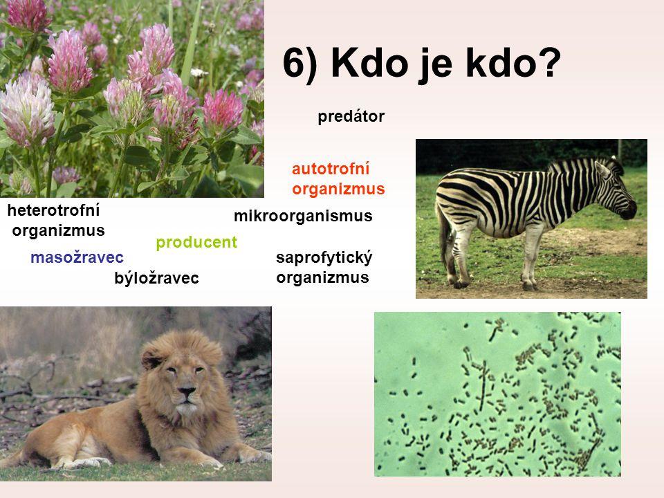 6) Kdo je kdo predátor autotrofní organizmus heterotrofní organizmus