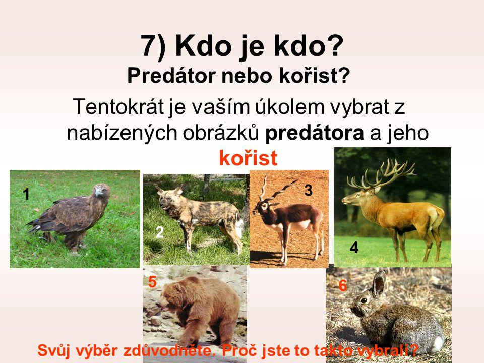 7) Kdo je kdo Predátor nebo kořist
