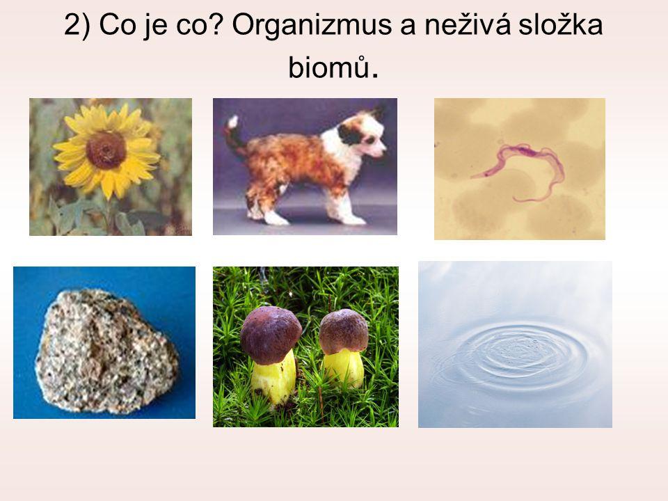 2) Co je co Organizmus a neživá složka biomů.