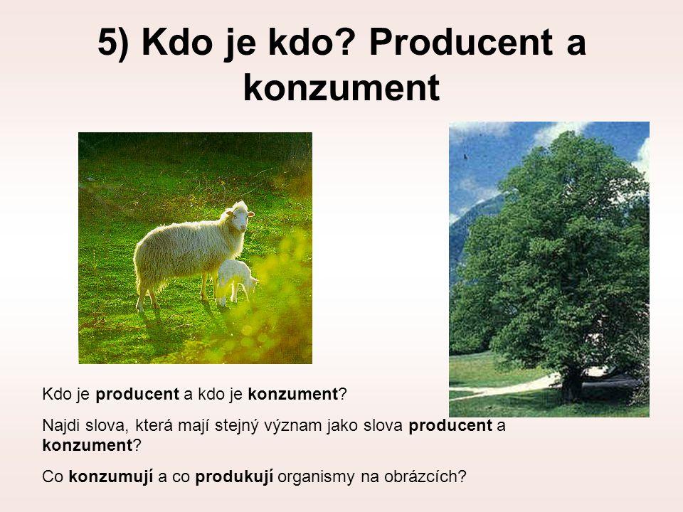 5) Kdo je kdo Producent a konzument