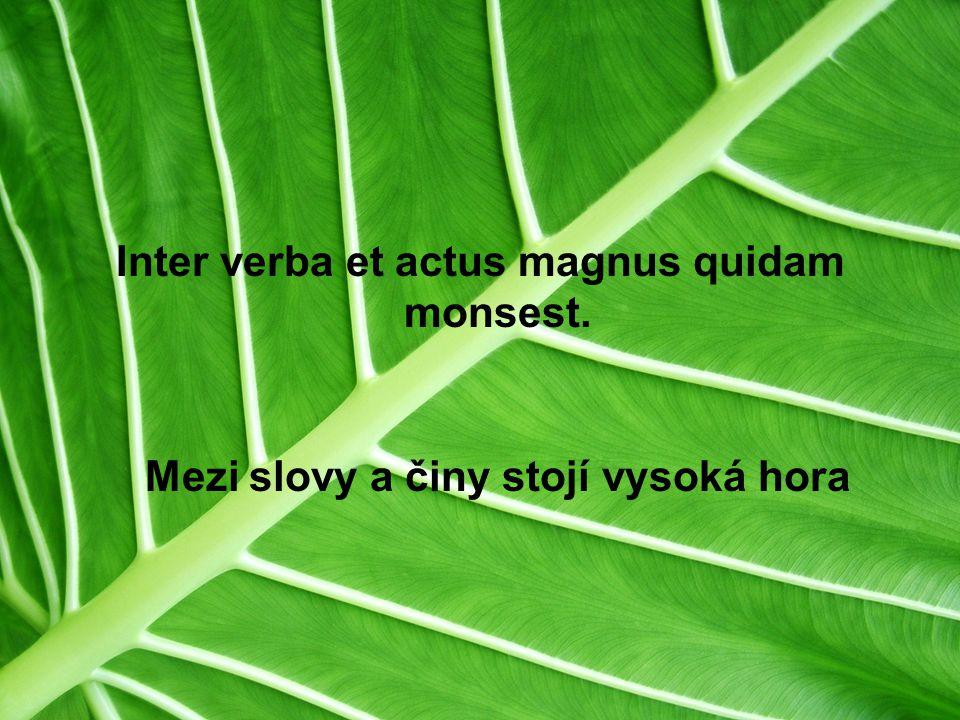 Inter verba et actus magnus quidam monsest.