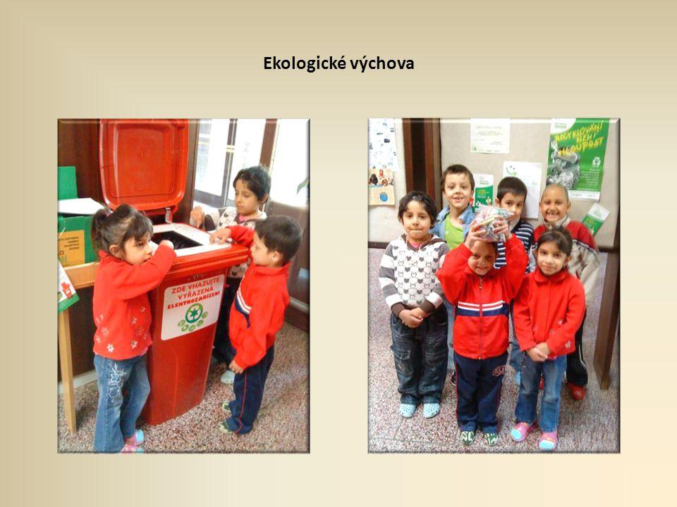 Ekologické výchova