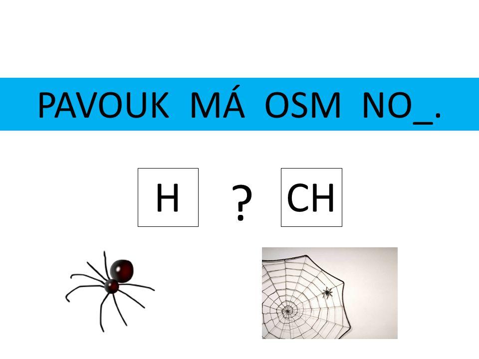 PAVOUK MÁ OSM NO_. H CH