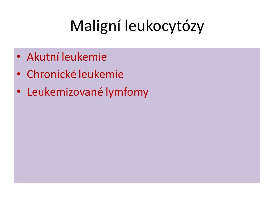 Maligní leukocytózy Akutní leukemie Chronické leukemie