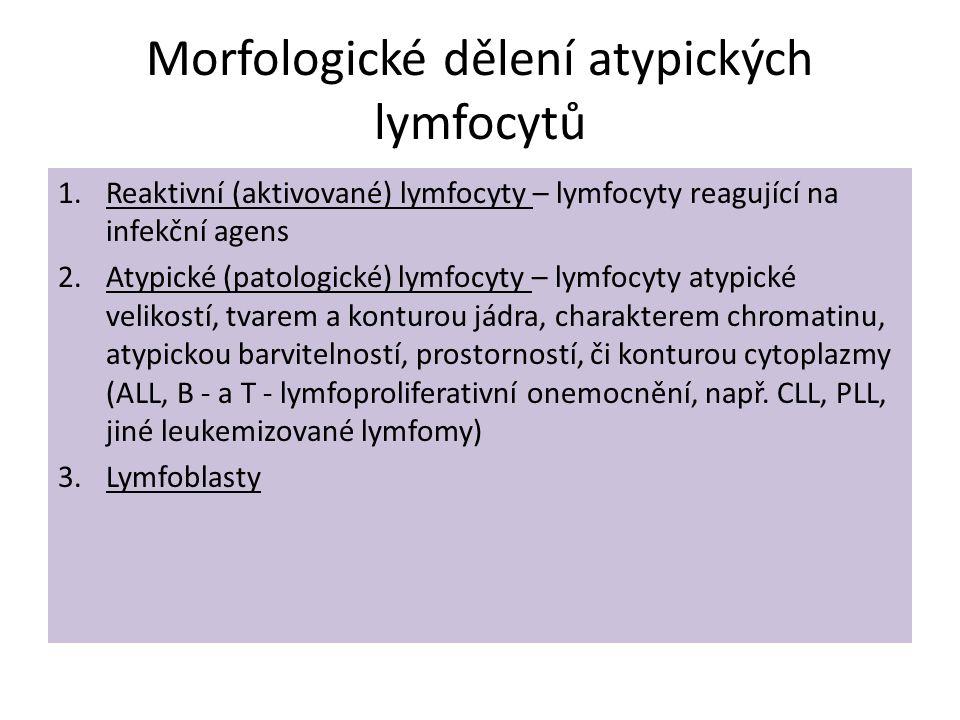Morfologické dělení atypických lymfocytů