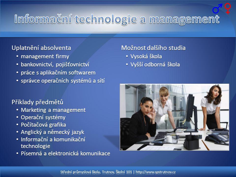 Informační technologie a management