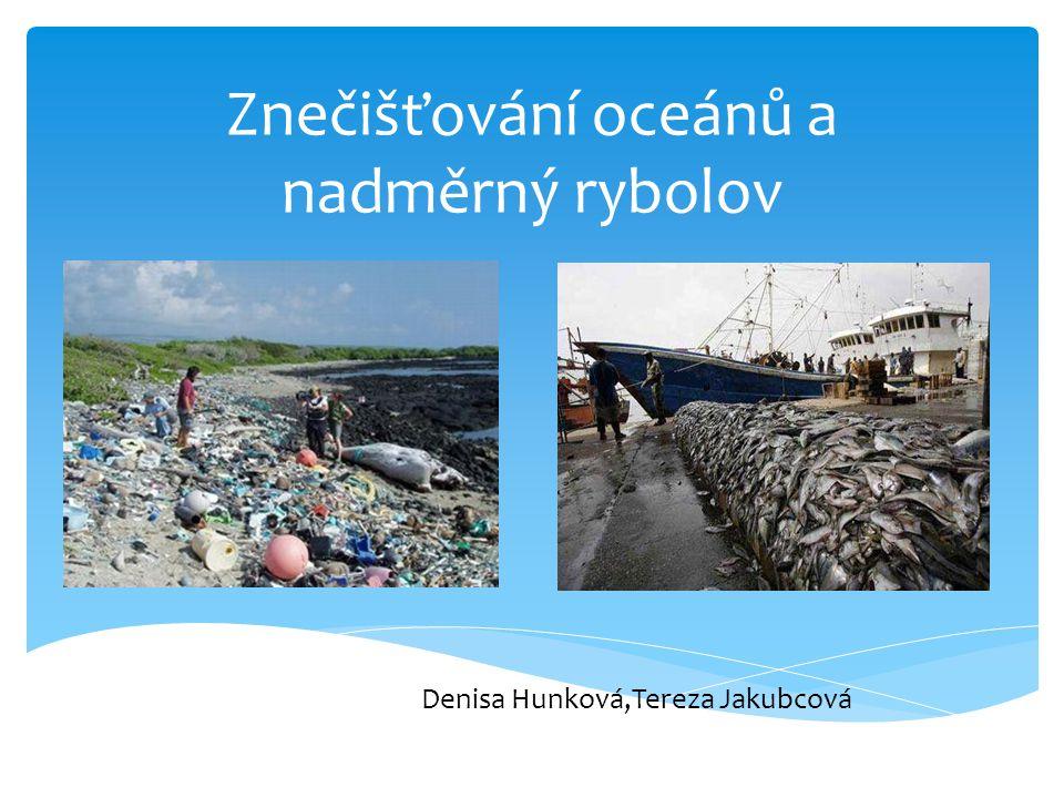 Znečišťování oceánů a nadměrný rybolov